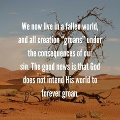 fallen-world